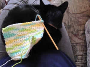 Crocheting Alys While Gypsy Sleeps